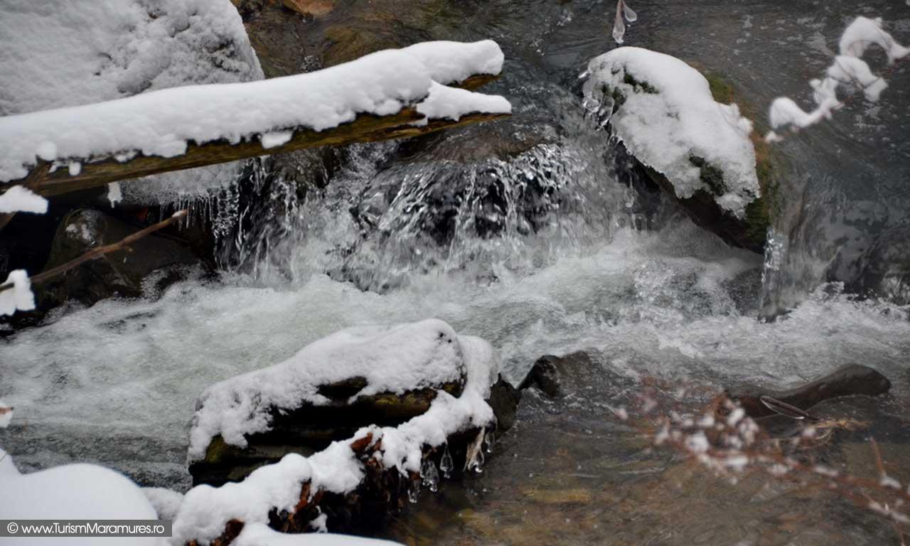 Valea Nistru Maramures_03