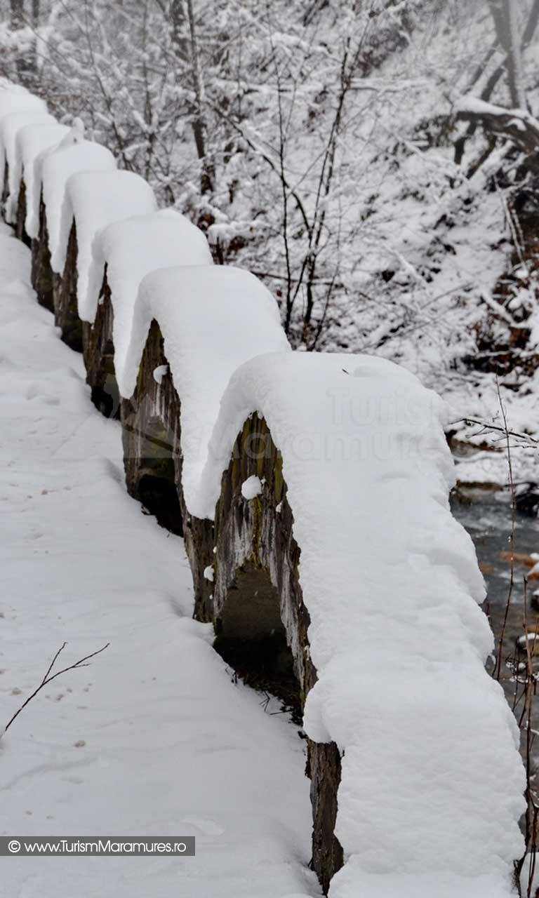 Valea Nistru Maramures_04