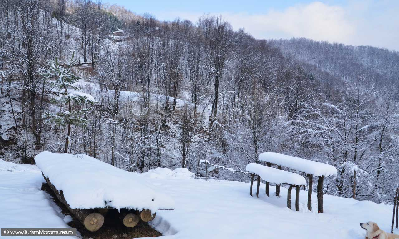 Imagini-de-iarna-Maramure_02