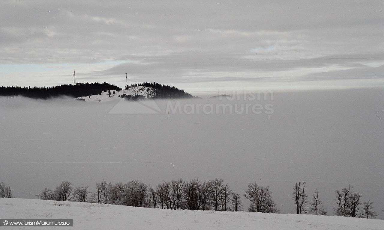 Varful-Varatec_Maramures