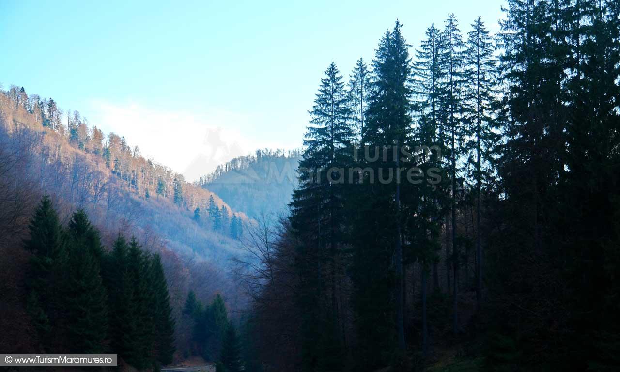 Valea Poienii_Maramures
