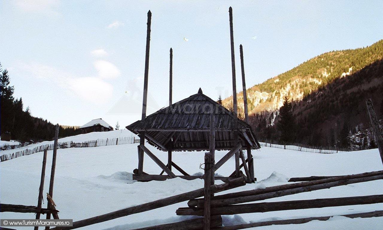 03-Sopru-de-fan-iarna-valea-Repedea-zona-Smereceni-Muntii-Maramuresului