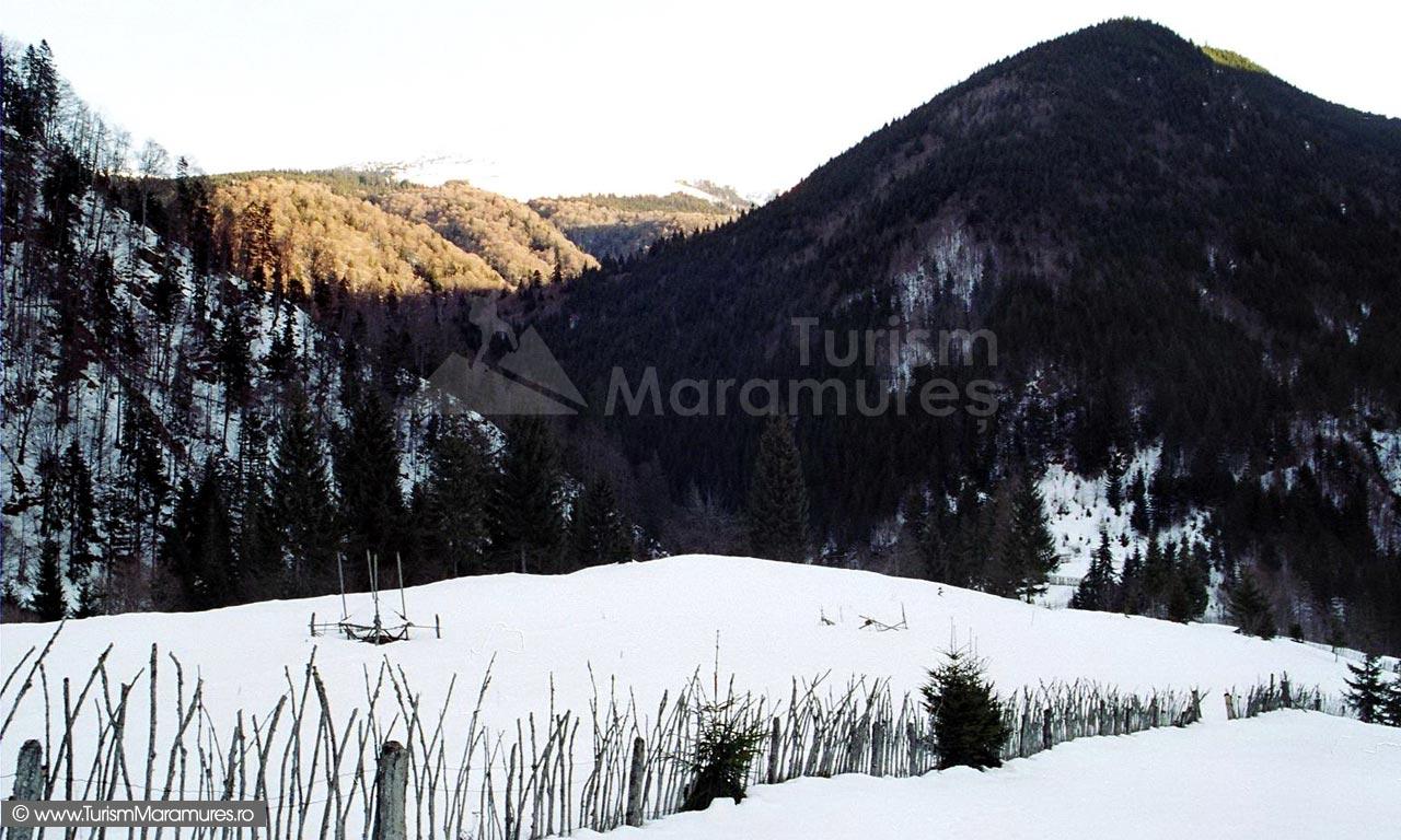 04-Vedere-de-la-Smereceni-spre-Picioru-Dancu-Muntele-Farcau-Muntii-Maramuresului