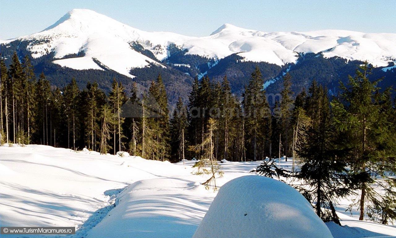 09-varful-Farcau-stanga-si-varful-Mihailec-dreapta-Muntii-Maramuresului-Turism-Maramures