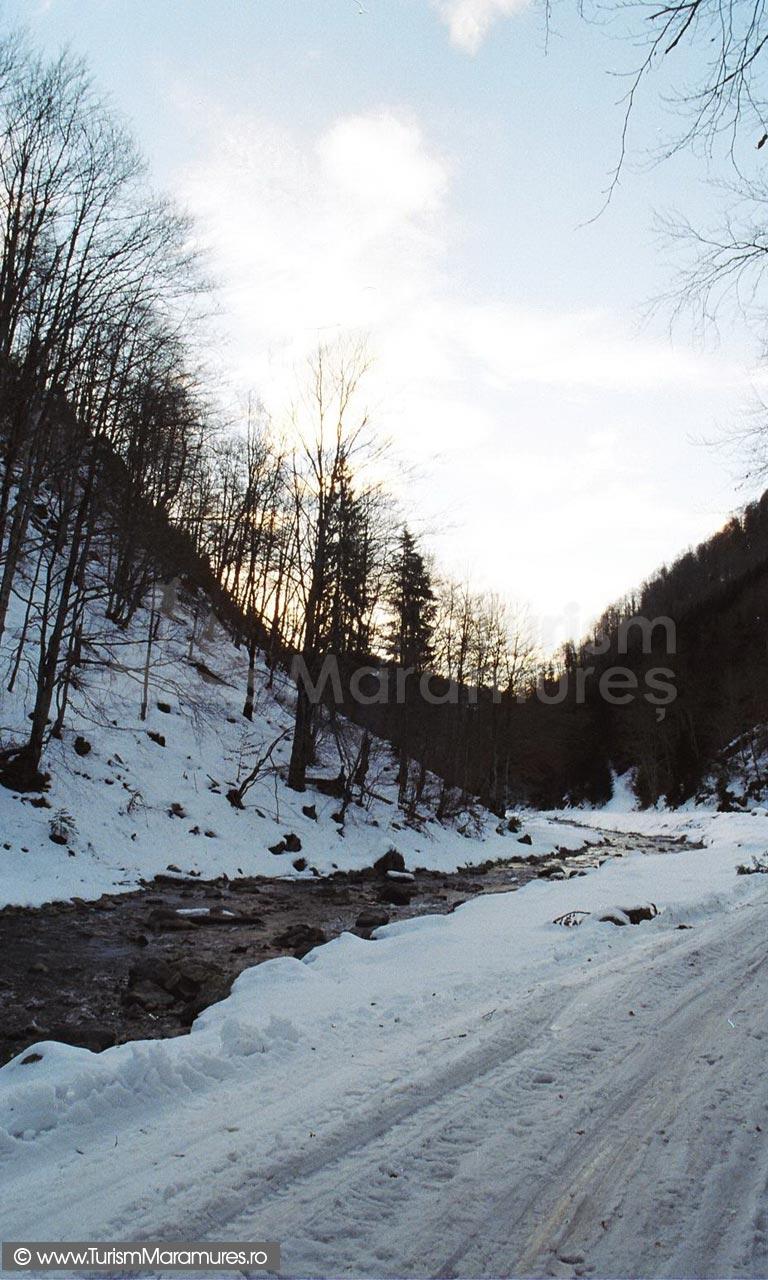 13-Iarna-valea-Repedea-Turism-Maramures