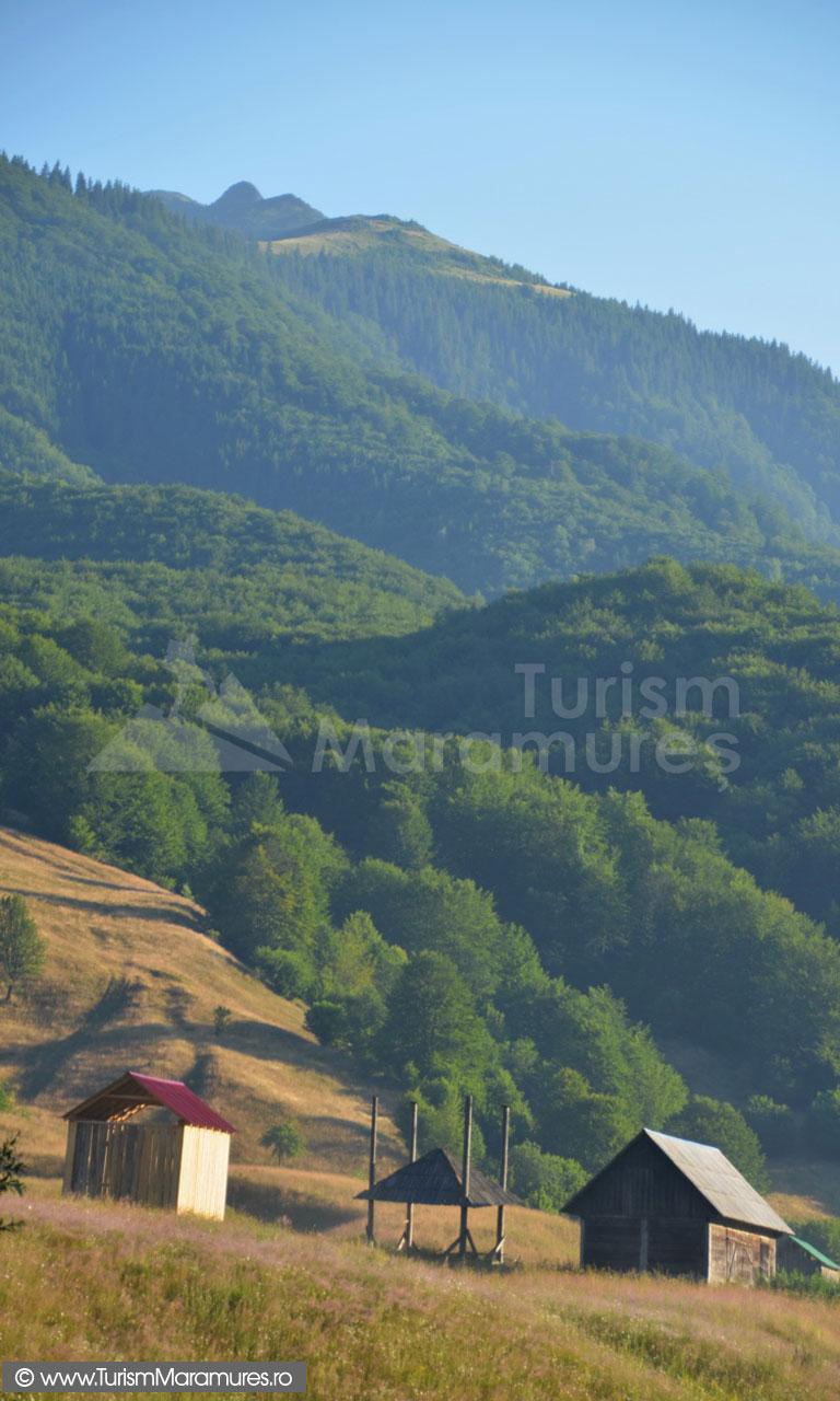 07_Vedere-spre-Claia-Muntelui-lui-Serban
