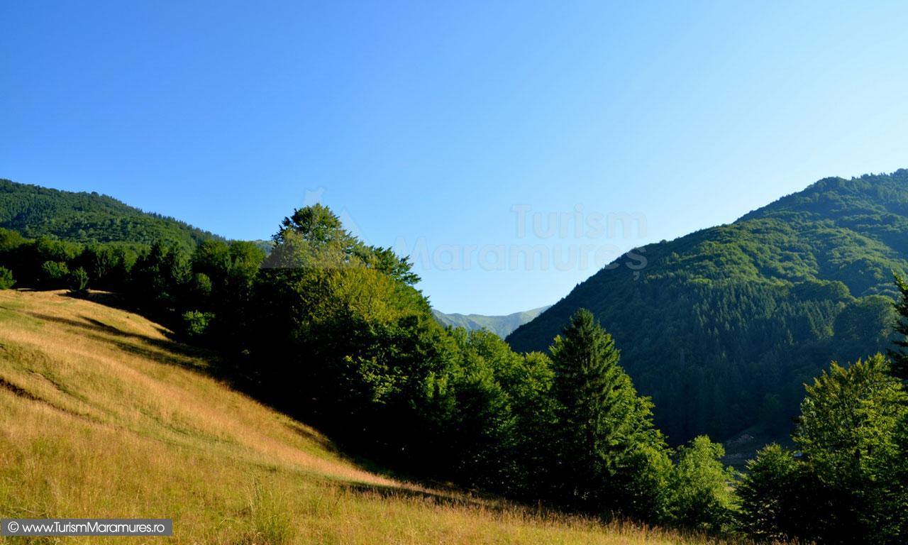 17_Suind-pe-Muntele-lui-Serban