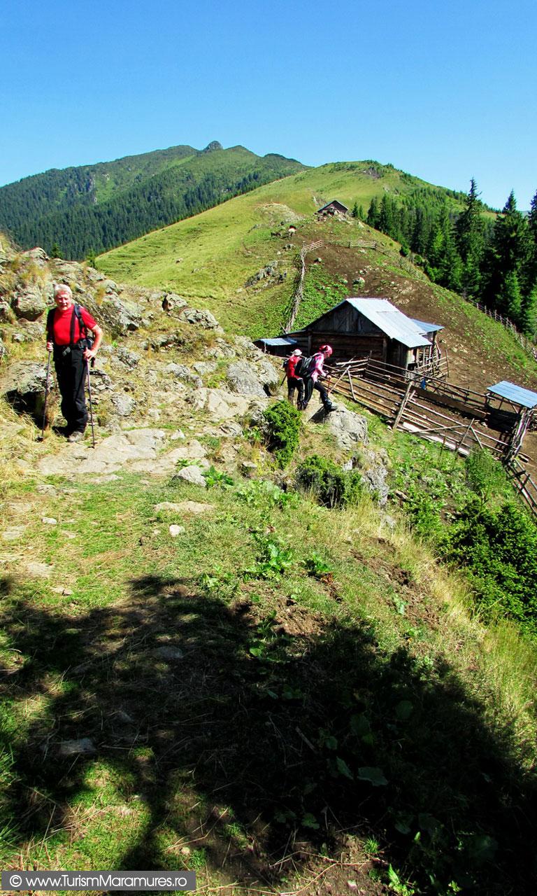 27_Stana-de-pe-Muntele-lui-Serban