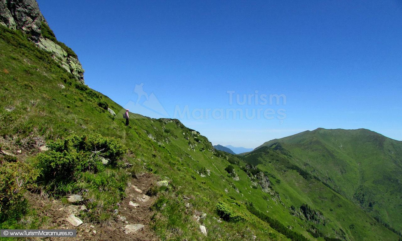 33_Culmea-Muntelui-lui-Serban-si-Pop-Ivan