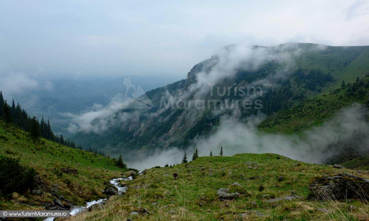 Muntii-Rodnei_-Valea-si-Rezervatia-Piatra-Rea