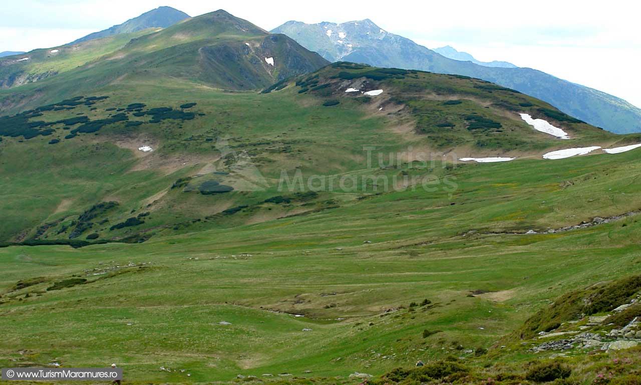 Muntele-Cailor_Putredu-Galatului_varful-Laptelu_varful-Puzdre_Pietrosul