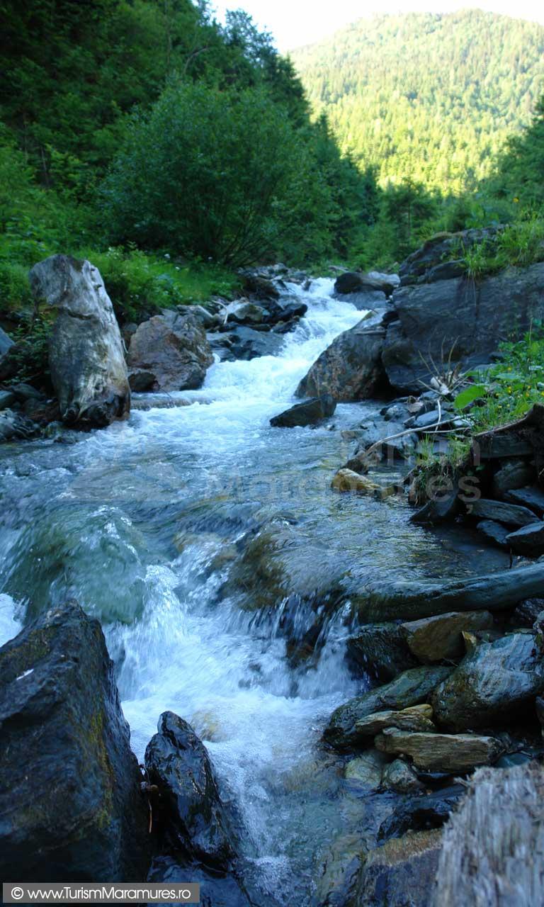 Valea-Negoiescu