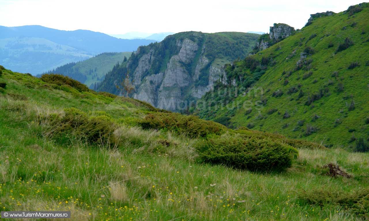 Valea-si-Rezervatia-Piatra-Rea