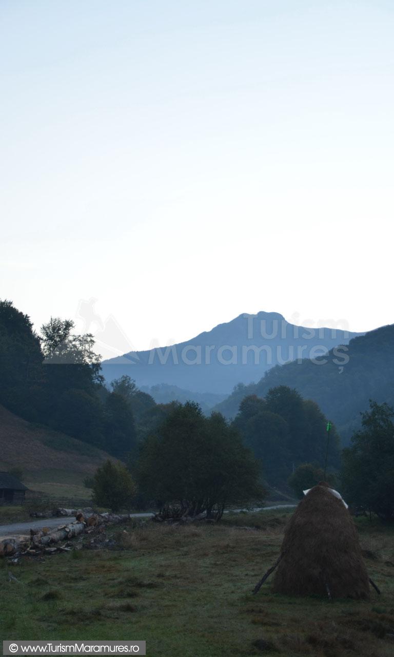 07_Varful-Arcer-vazut-din-valea-Bradu