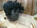 Muzeul-de-Mineralogie-Baia-Mare_Flori-de-mina_05