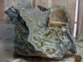 Muzeul-de-Mineralogie-Baia-Mare_Flori-de-mina_16