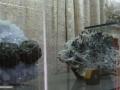 Muzeul-de-Mineralogie-Baia-Mare_Flori-de-mina_20