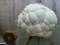 Muzeul-de-Mineralogie-Baia-Mare_Flori-de-mina_25