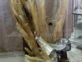 Muzeul-de-Mineralogie-Baia-Mare_Flori-de-mina_32