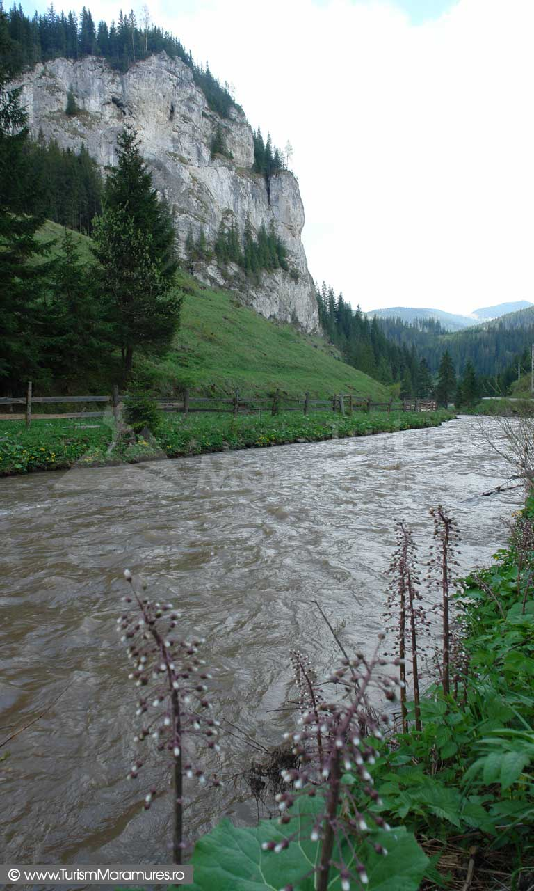 Valea-Tibau_Muntii-Tibau
