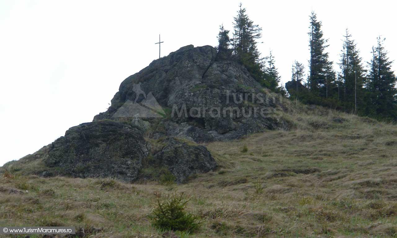 Varful-Magura-Mare_Muntii-Tibau