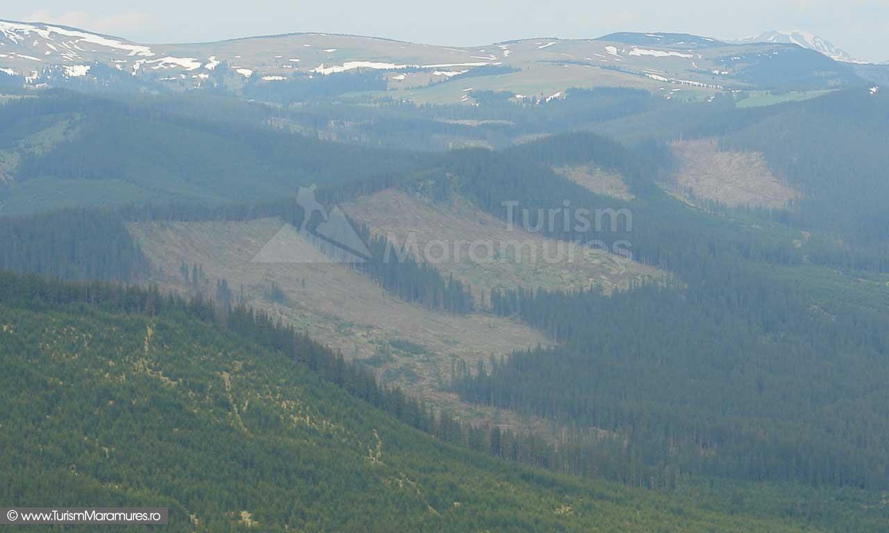 12_Parcul-Natural-Muntii-Maramuresului