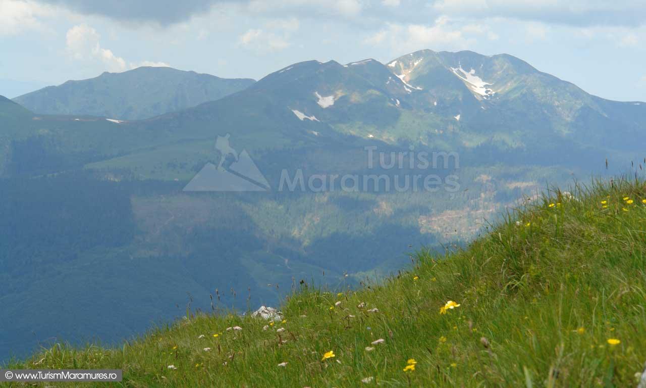 42_Muntele-Pop-Ivan-Muntii-Maramuresului