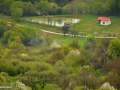 53_Helesteu-la-SE-de-Valisoara-pe-Valea-Rea