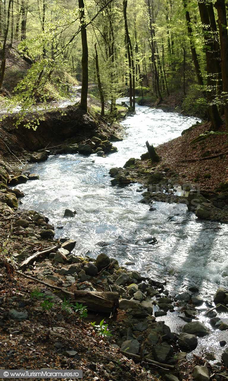 28_Valea-Baita-Maramures