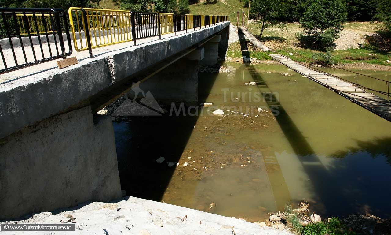 19_Podul-nou-si-puntea-de-la-Salnita