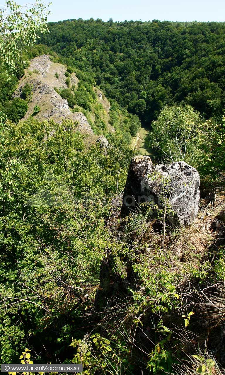 24_Custura-Cetatelei-si-Lapusul