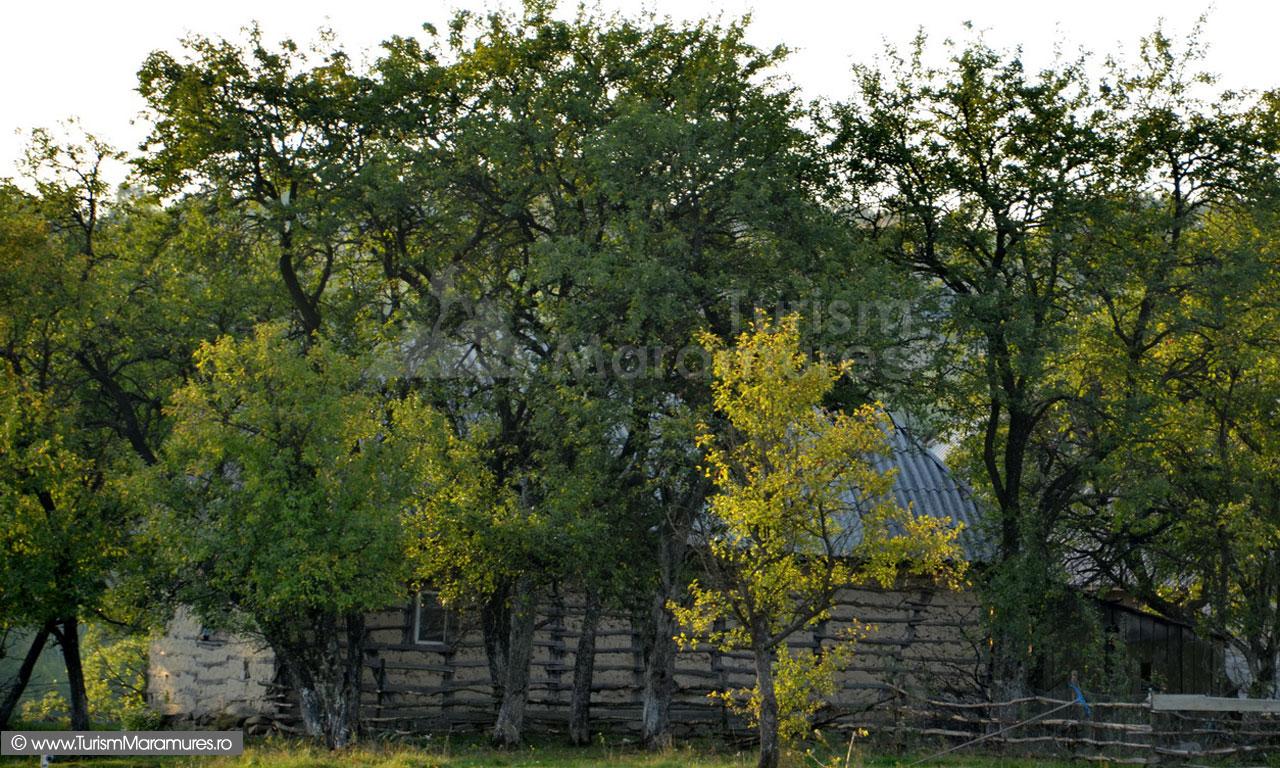 12_Codru-Butesei-casa-din-chirpici