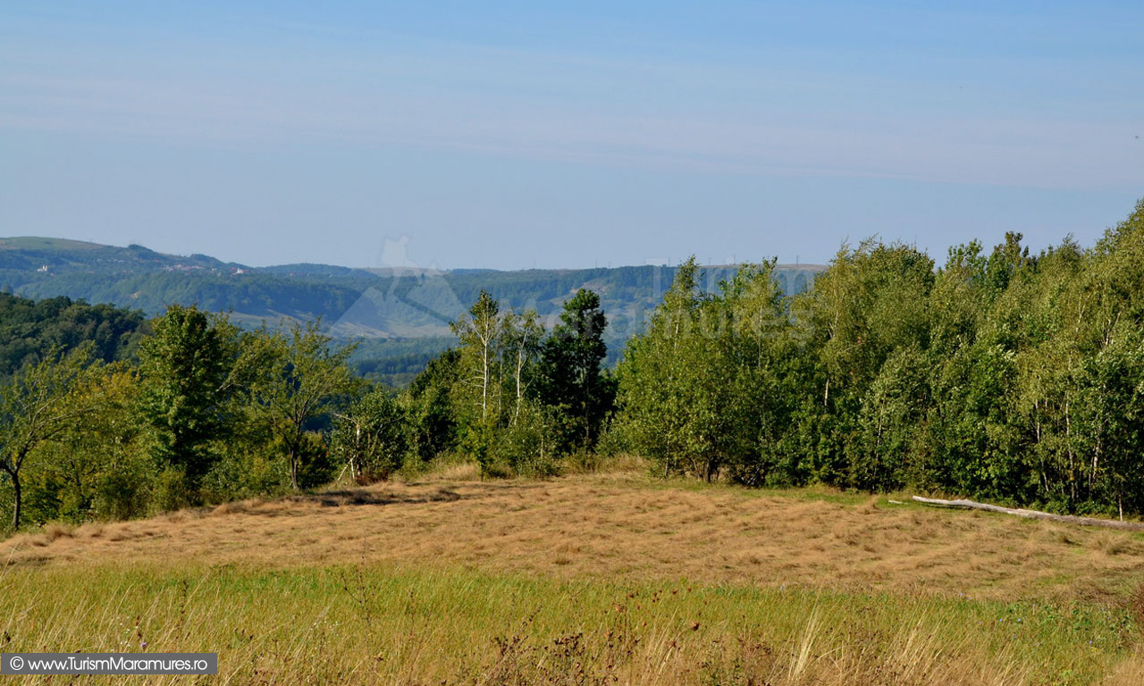 39_Sahelbe-prima-coasa-in-septembrie