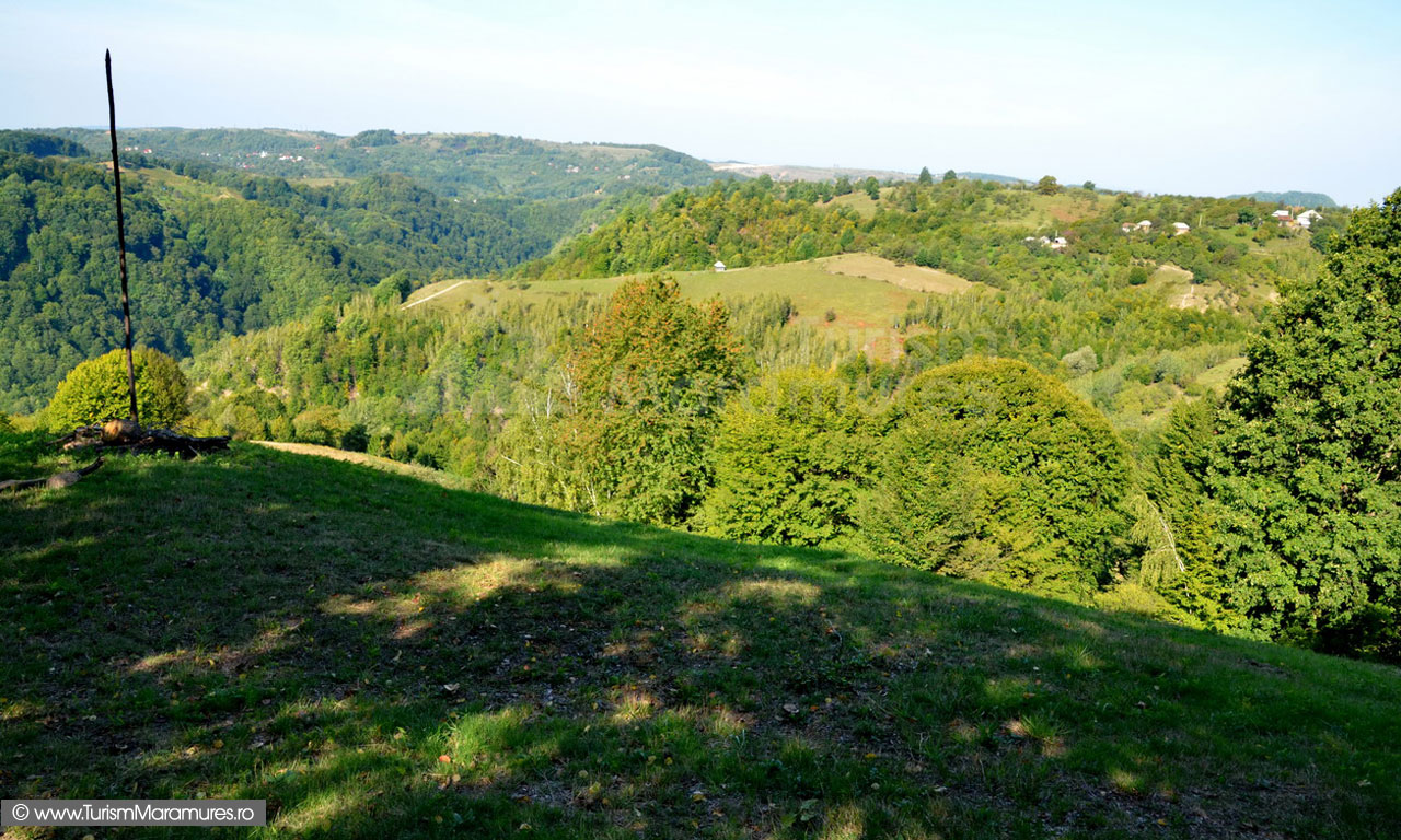 43_Vedere-spre-Codru-Butesei