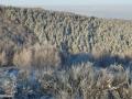 16-peisaj-iarna-Dupa-viscol