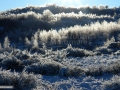 22-Feerie-matinala-iarna