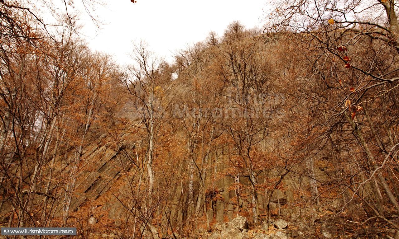 15_Rezervatia-Lespezi-Ignis
