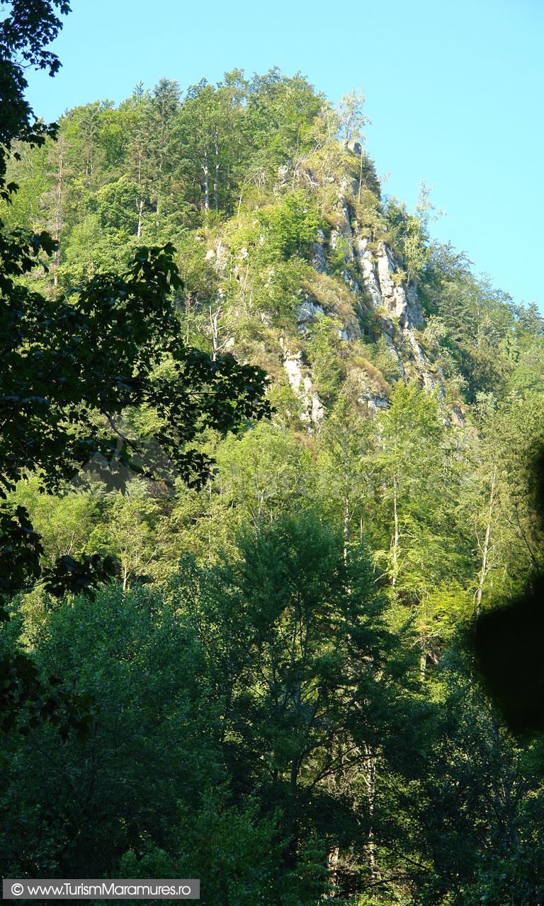 07_Valea-Runcu