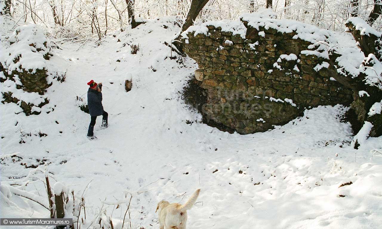 Cetatea-Seini-iarna