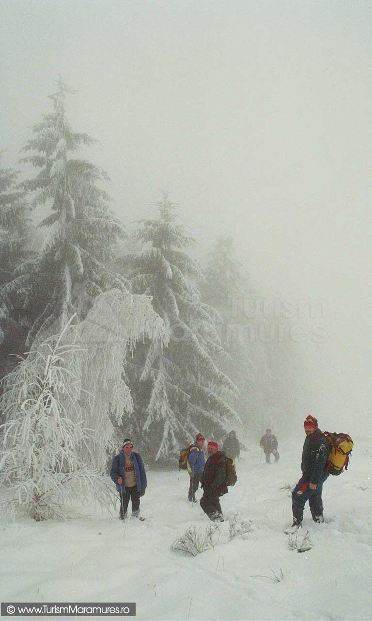 Drumetie-iarna-Maramures