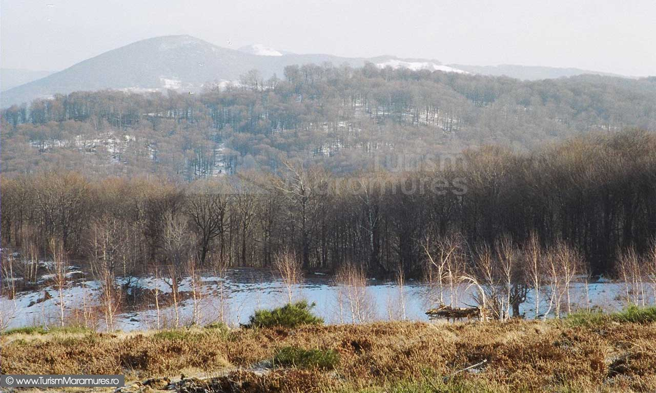 Muntele-Mic-si-varful-Pietroasa