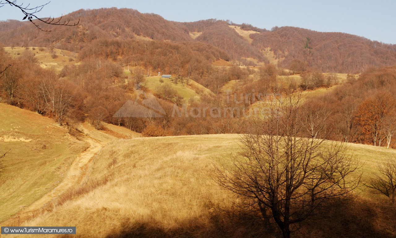 17_Dealul-Crucii-si-Arsita-Maramures