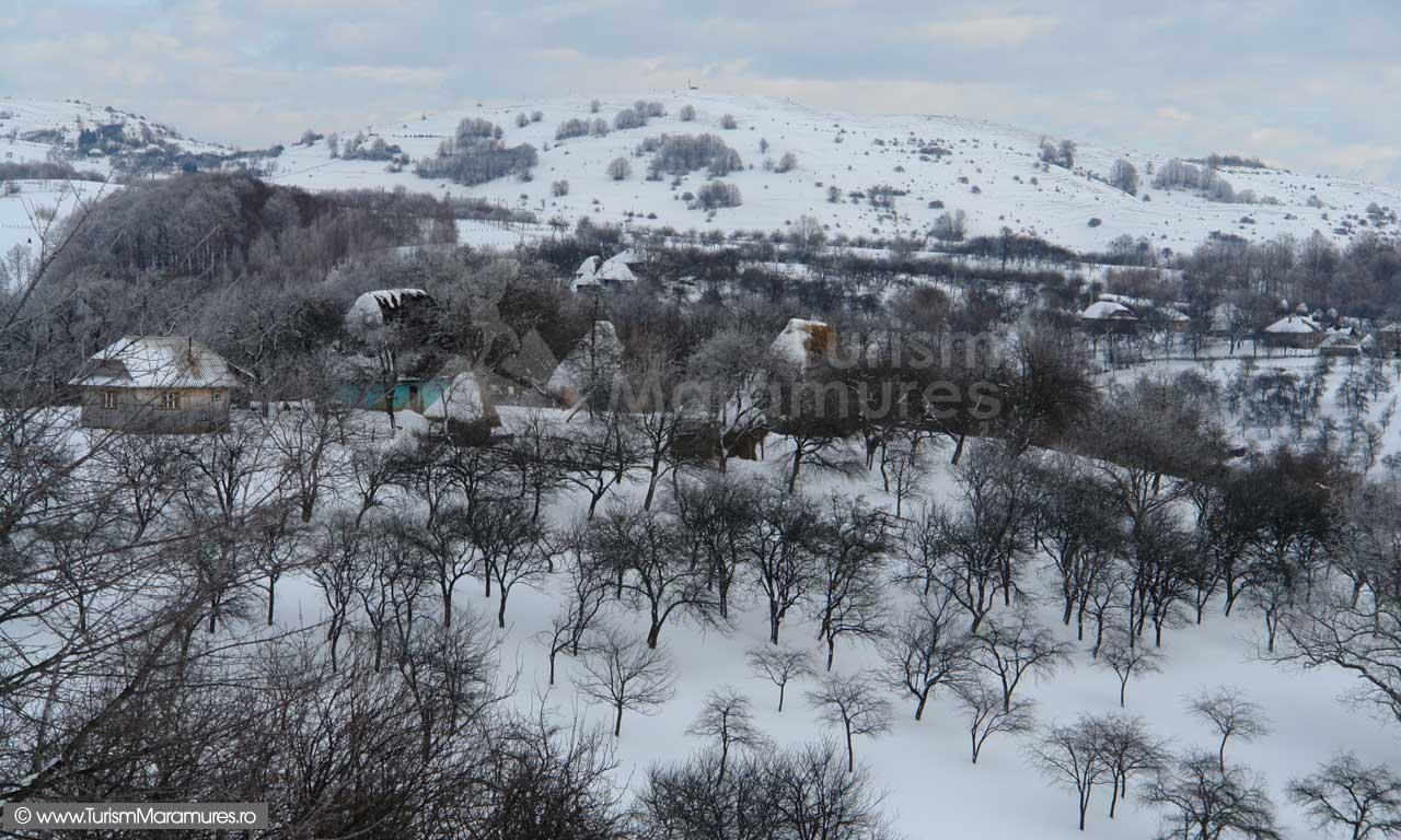 Dealul-Corbului_Maramures