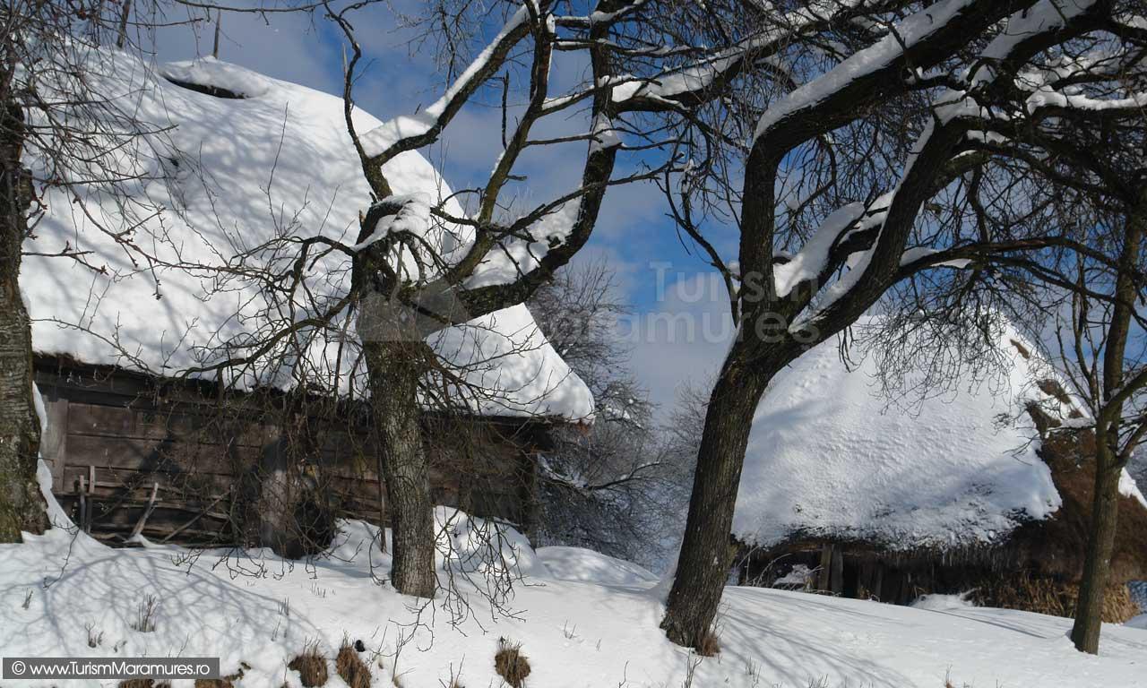 Sura-si-grajd-Tara-Chioarului-Maramures