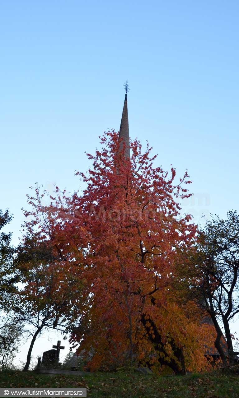 Biserica-Unesco-Surdesti
