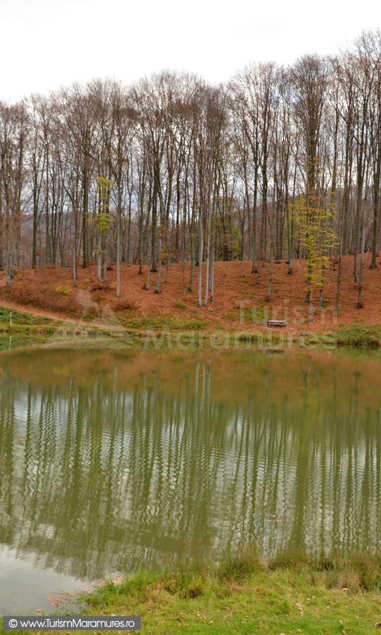 Lacul-Nistru_Maramures_03
