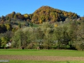 28-Barsana-Valea-Muntelui-valea-Trestia