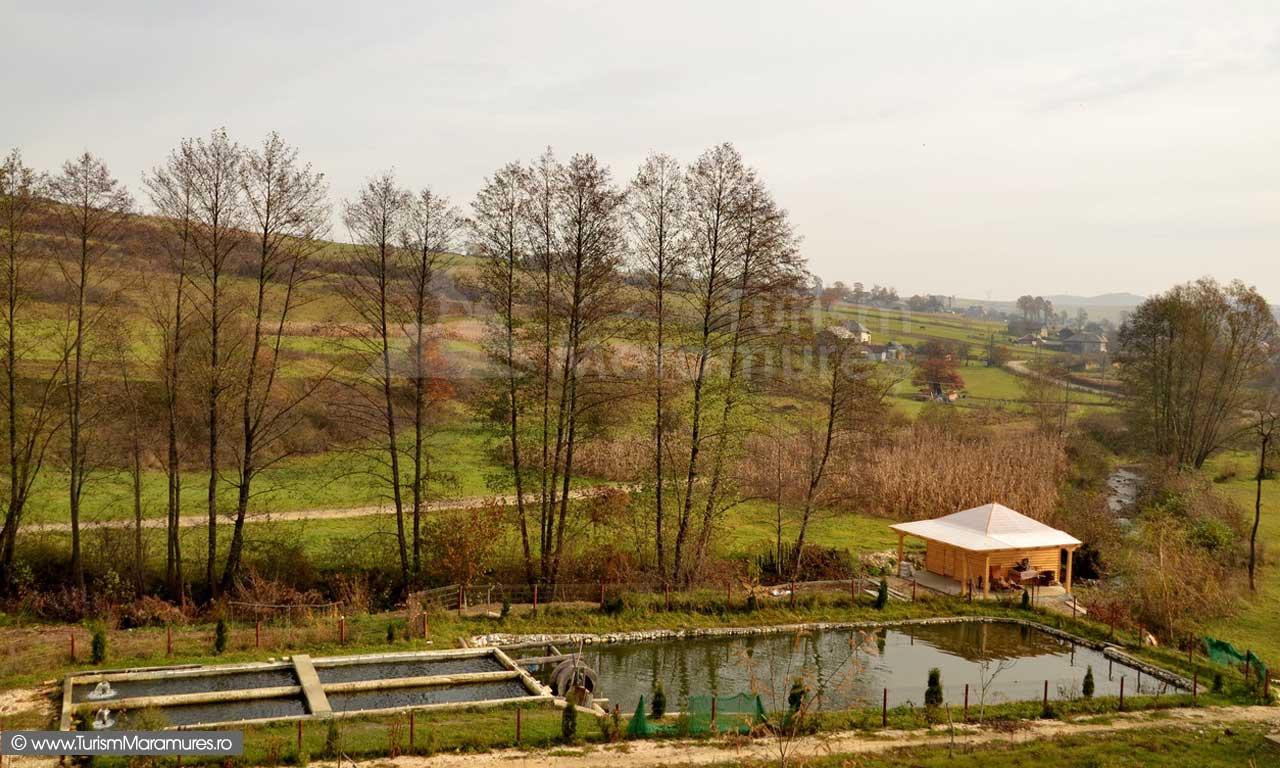 29_Pastravarie-Valea-Borcutului