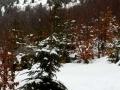 05-Gutaiul-Mic-iarna