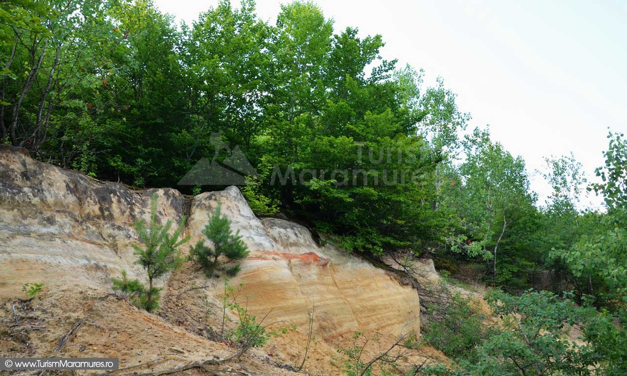 56_Brusturi-Corboaia-banc-de-gresii